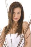 Bellezza Fotografia Stock Libera da Diritti