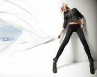 Bellezza alla moda Immagine Stock