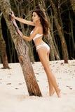 Bellezza che si leva in piedi vicino all'albero Immagini Stock Libere da Diritti