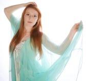 Bellezza d'annata del vestito Immagini Stock