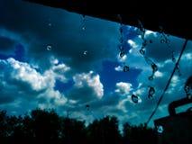 Bellezza dai blu|| fotografia stock libera da diritti