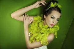 Bellezza del Brunette fotografia stock
