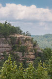Bellezza del Kentucky Immagini Stock Libere da Diritti