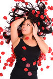 Bellezza del petalo di Rosa Fotografia Stock