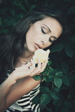 Bellezza delicata Fotografie Stock Libere da Diritti