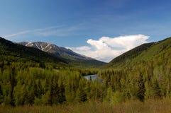 Bellezza dell'Alaska Immagini Stock