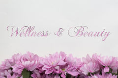 Bellezza dell'annuncio di benessere - tema con i fiori rosa Fotografie Stock Libere da Diritti