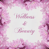 Bellezza dell'annuncio di benessere - tema con i fiori rosa Immagine Stock