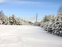 Bellezza dell'inverno Fotografia Stock