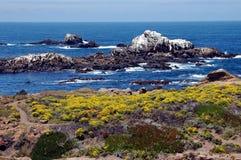 Bellezza dell'oceano Fotografie Stock Libere da Diritti