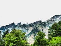 Bellezza della natura Fotografia Stock