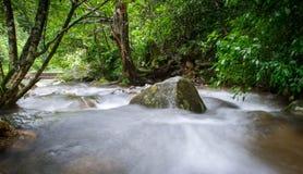 Bellezza delle nature al suo punto di vista Fotografia Stock Libera da Diritti
