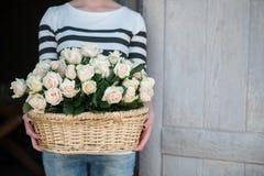 Bellezza delle rose Immagine Stock