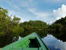 Bellezza di Amazon Fotografia Stock Libera da Diritti