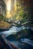 Bellezza di autunno Bello paesaggio selvaggio durante la caduta immagine stock libera da diritti