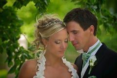 Bellezza di cerimonia nuziale Fotografia Stock