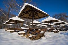 Bellezza di inverno Fotografie Stock Libere da Diritti