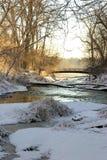 Bellezza di inverno Fotografie Stock
