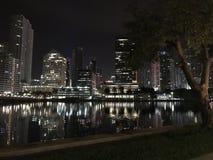 Bellezza di notte Fotografie Stock Libere da Diritti