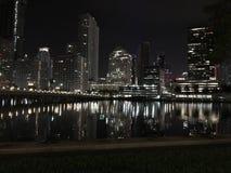 Bellezza di notte Immagini Stock