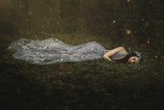 Bellezza di sonno fotografia stock