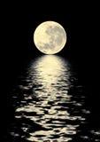 Bellezza dorata della luna Fotografia Stock