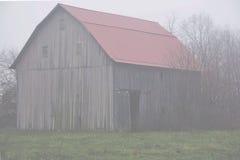 Bellezza e la nebbia Immagine Stock