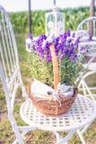 Bellezza e lavanda fresca nel vaso di fiore Immagine Stock Libera da Diritti