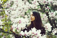 Bellezza e natura, gioventù e freschezza, primavera ed estate, magnolia immagini stock