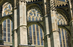 Bellezza gotica Fotografia Stock Libera da Diritti