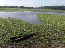 bellezza naturale in Bangladesh fotografia stock libera da diritti
