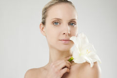 Bellezza naturale con il Amaryllis immagini stock