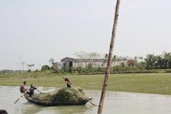 Bellezza naturale dell'isola di Bhola Fotografie Stock Libere da Diritti