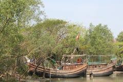 Bellezza naturale dell'isola di Bhola Immagini Stock Libere da Diritti