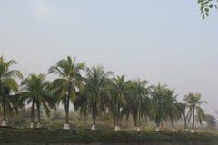 Bellezza naturale dell'isola di Monpura Fotografia Stock Libera da Diritti