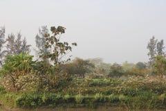 Bellezza naturale dell'isola di Monpura Immagini Stock Libere da Diritti