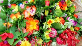 Bellezza naturale della raccolta del fiore di colori dei fiori Fotografie Stock
