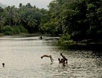Bellezza naturale di Thirparapu immagini stock libere da diritti
