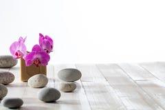 Bellezza naturale, igiene, doccia di zen o lavanderia sostenibile, fondo di legno Immagini Stock Libere da Diritti
