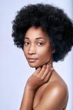 Bellezza nera africana in studio fotografia stock libera da diritti