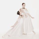 Bellezza romantica Retro ballerine di stile Immagini Stock