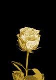 Bellezza Rosa dorata illustrazione di stock