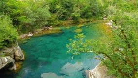 Bellezza selvaggia del Montenegro del canyon tranquillo del fiume di Mrtvica Lan della natura Immagine Stock