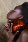 Bellezza sudafricana fotografie stock