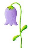 Bellflower azul Imagens de Stock
