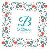 Bellflower floral element, wedding design Stock Photography