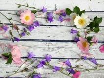 Bellflower kwiaty, dzika róża i różowi płatki, Obraz Stock