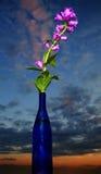 Bellflowers in bottiglia Fotografie Stock Libere da Diritti