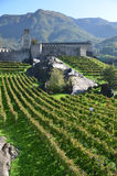 Bellinzona, Switzerland Royalty Free Stock Image