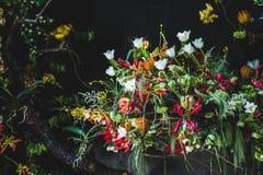 Bello ¼ ŒBonsai del decorationï di disposizione dei fiori su una sedia blu illustrazione di stock